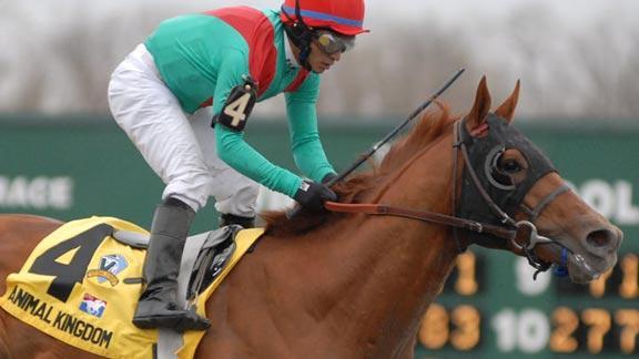 Animal Kingdom Wins 2011 Kentucky Derby
