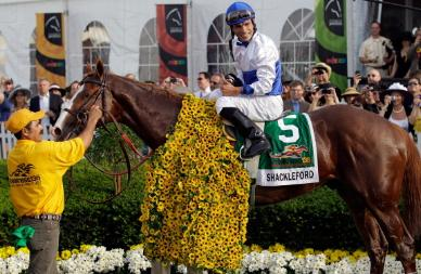 Shackleford Wins Preakness Stakes