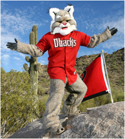 Arizona Diamondbacks Mascot D. Baxter The Bobcat