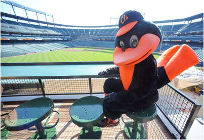 Baltimore Orioles Mascot The Oriole Bird