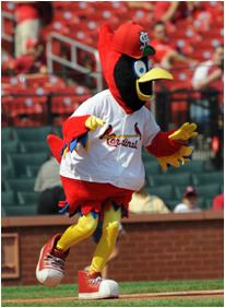 St. Louis Cardinals Mascot Fredbird