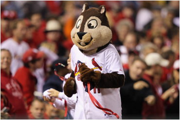 St. Louis Cardinals Mascot Rally Squirrel