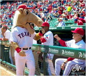 Texas Rangers Mascot Rangers Captain