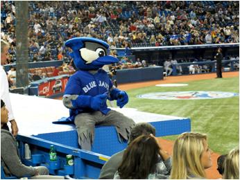 Toronto Blue Jays Mascot Ace