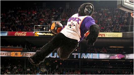 Phoenix Suns Mascot The Suns Gorilla