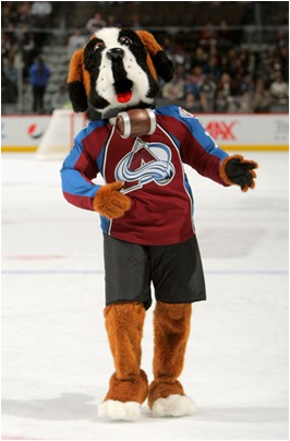 Colorado Avalanche Mascot Bernie The St. Bernard
